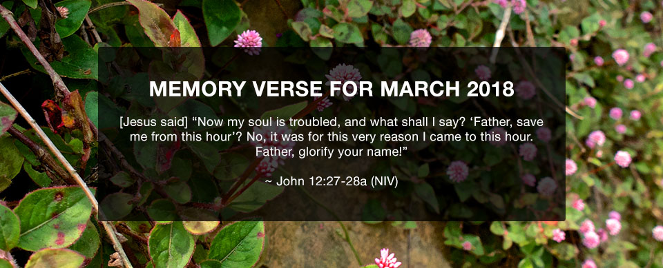 Church in Singapore Memory Verse March 2018