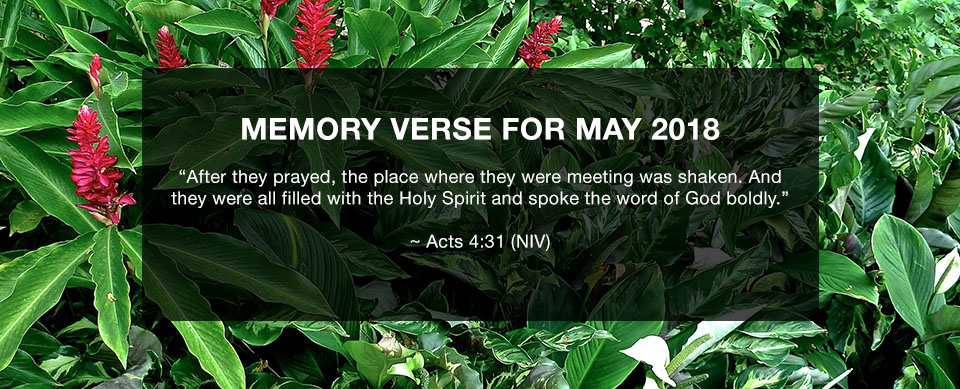 Church in Singapore Memory Verse May 2018