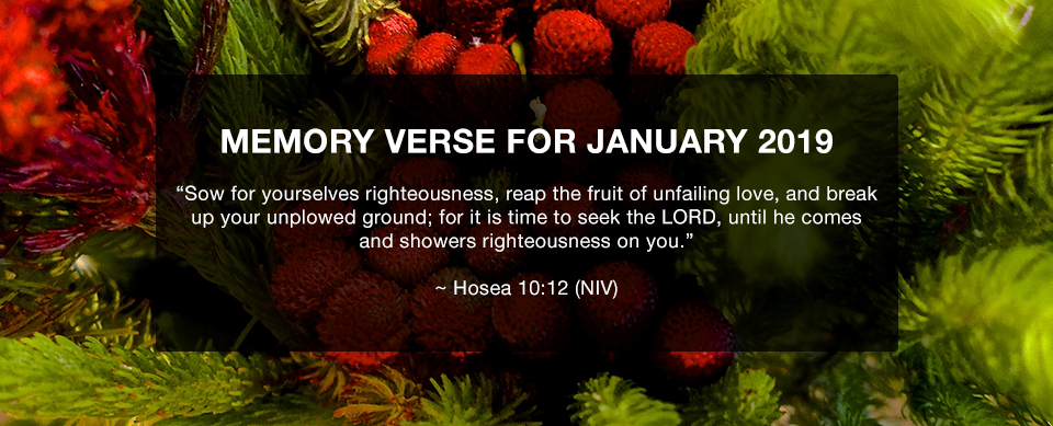 Church in Singapore Memory Verse January 2019