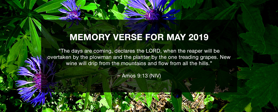 Church in Singapore Memory Verse May 2019