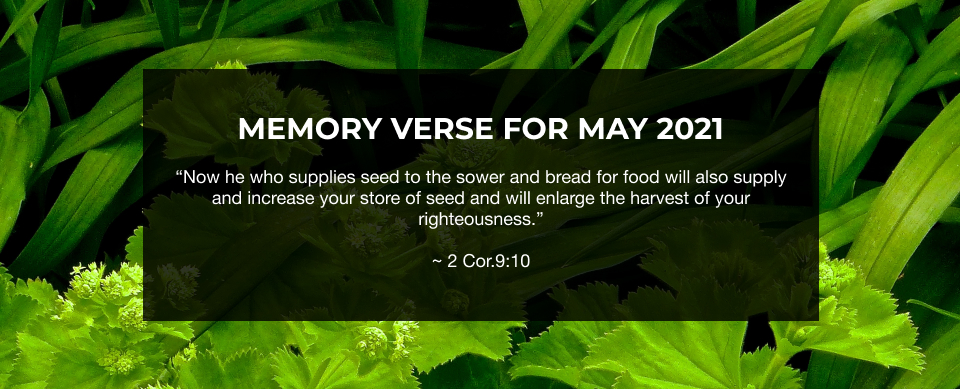 Church in Singapore Memory Verse for May 2021